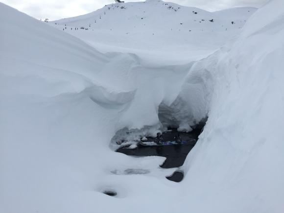 snowboard, snow, whistler, vancouver, canada, snowboarding,